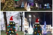 Kalėdinių eglučių alėja